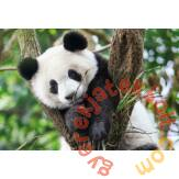 Clementoni 104 db-os  puzzle - WWF - Panda (27997)