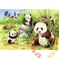 Ravensburger 2 x 24 db-os puzzle - Koalák és pandák (07820)