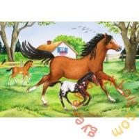 Ravensburger 2 x 24 db-os puzzle - A lovak világa (08882)