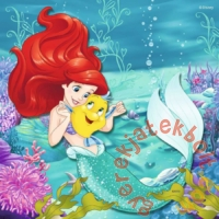 Ravensburger 3 x 49 db-os puzzle - Disney Princess (09350)