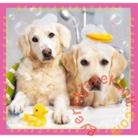 Trefl 3 az 1-ben puzzle (20,36,50 db-os) - Aranyos kutyusok (34845)