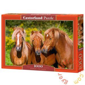 Castorland 1000 db-os puzzle - Lóbarátok (C-103959)