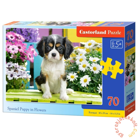 Castorland 70 db-os puzzle - Spániel kiskutya (B-070053)