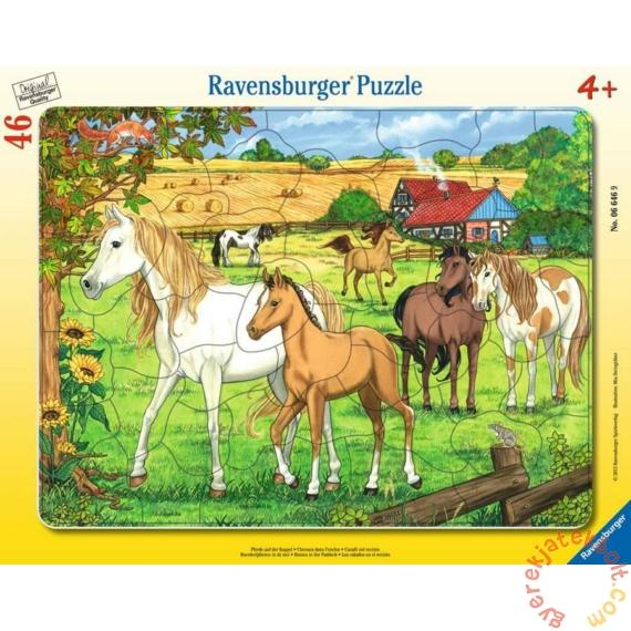 Ravensburger 46 db-os keretes puzzle - Pacik a mezőn (06646)